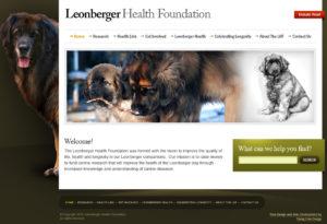 Leonberger-72-300x205 Portfolio