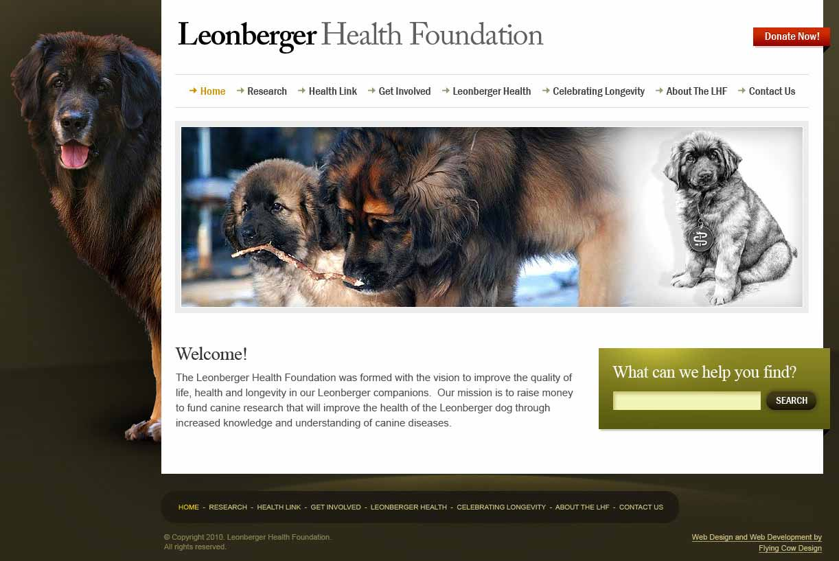 Leonberger Web Design in Las Vegas, NV