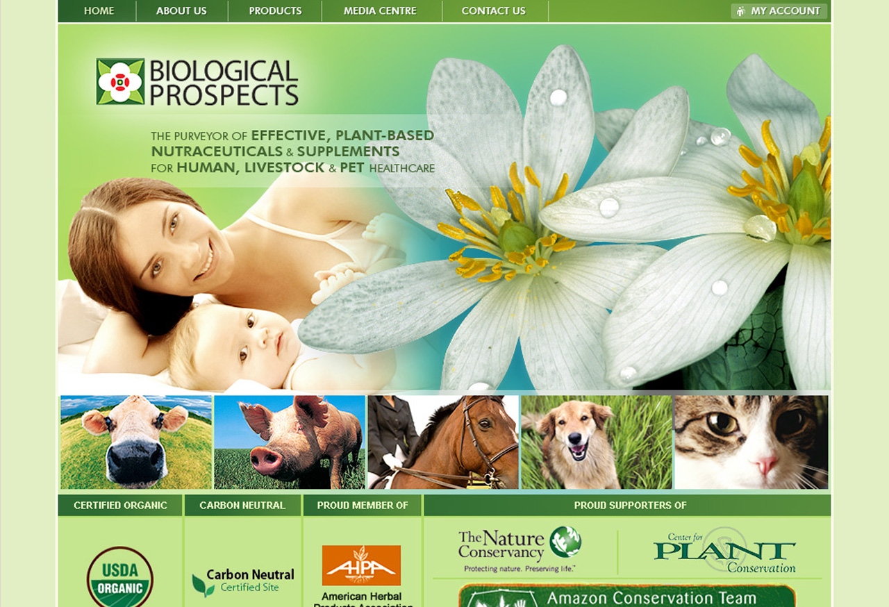 biologicalprospects-250 Medical Website Design