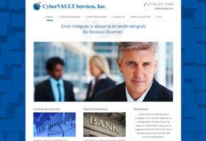 cybervault-277-300x205 Portfolio