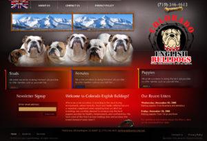 englishbulldogs-52-300x205 Portfolio