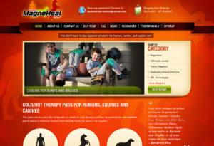 magneheat-75-300x205 Portfolio