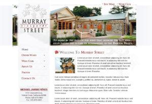 murrayst-272-300x205 Portfolio