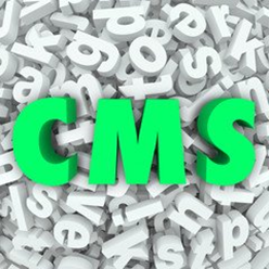 CMS Integration Services from Flying Cow Design