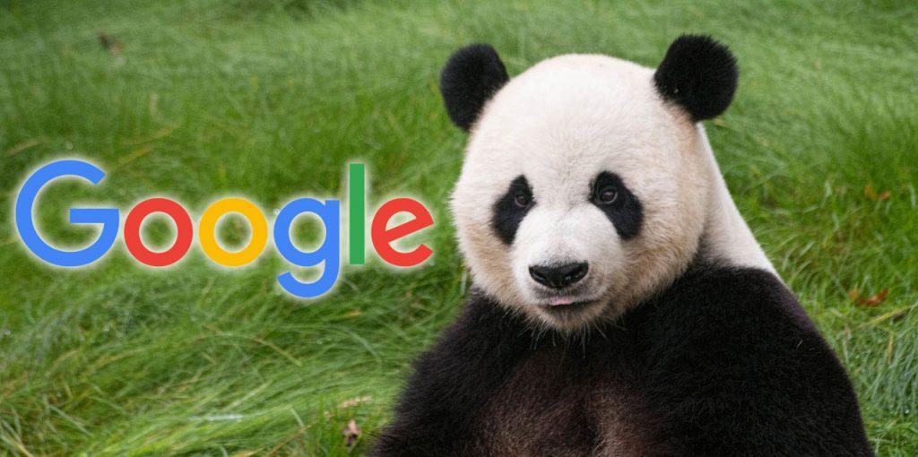 google-panda-1024x510 Google Panda Explained
