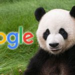 Google Panda Explained