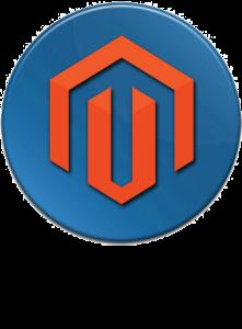 magento-seo-221x300 Magento Web Design Services